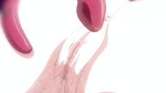 Hentai Tentacles Fucking Babe